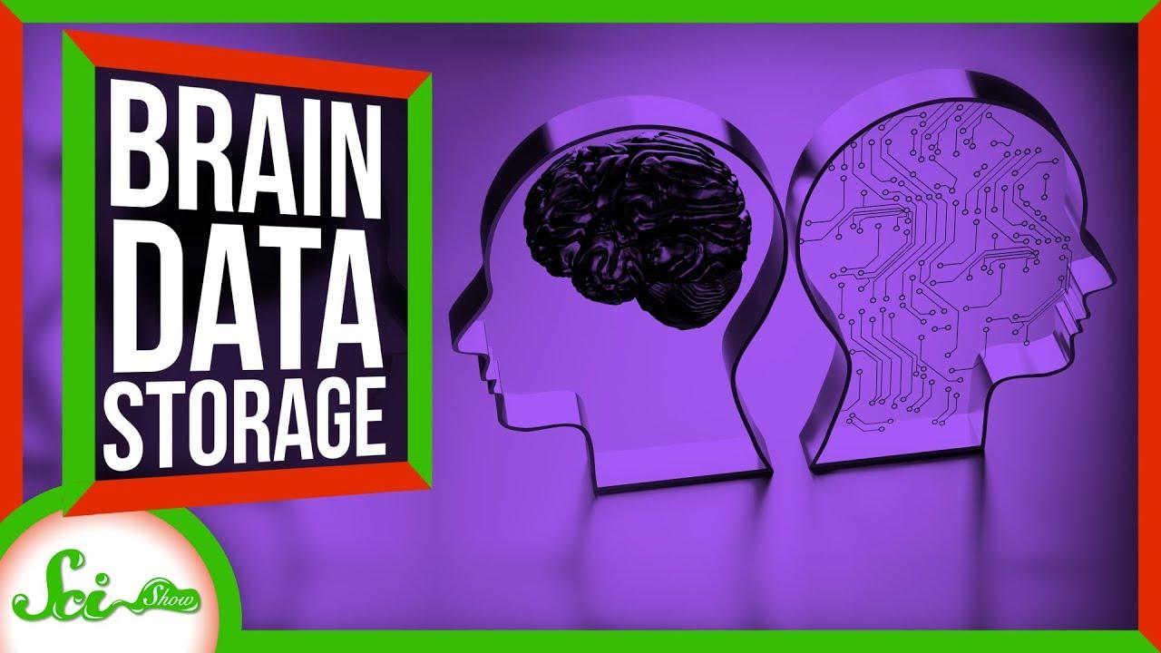 ヒトの脳の容量は150TBもあるらしい