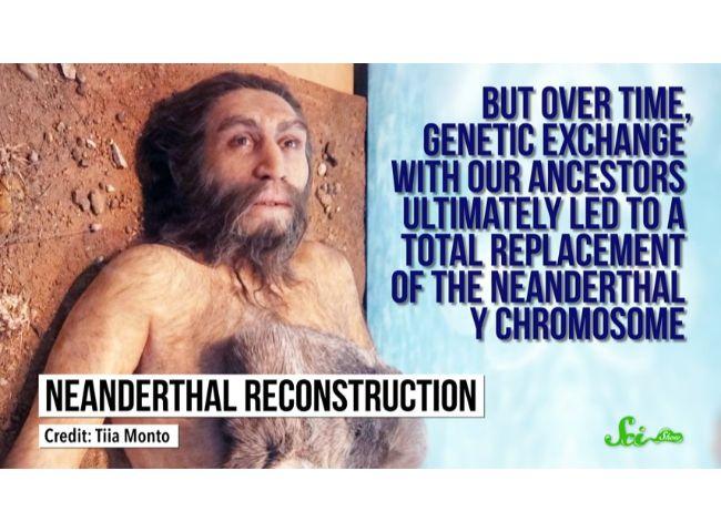 人 遺伝子 ネアンデルタール の