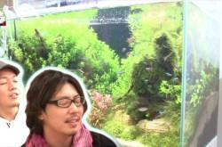 徹底討論! オフィスに20万円の水槽は必要なのか? – バーグハンバーグバーグTV