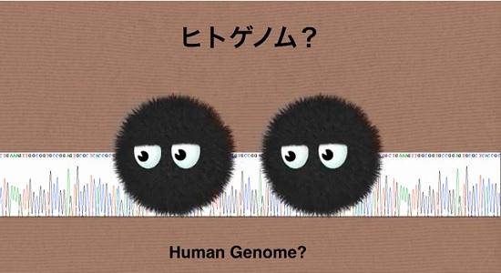 cap21 genomu 0942
