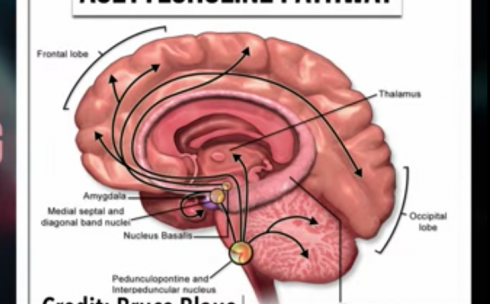 意味 のどちんこ 【ボイストレーニング】喉を開く発声とは|ボーカル・ボイストレーニングの知識