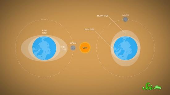 周期 地球 公転