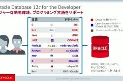 DBアプリ開発をもっと楽に デモで分かった「Oracle Live SQL」の真の実力