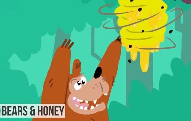 クマは蜂蜜が大好物ではない? 私たちの動物への誤解8つ