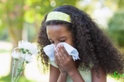 アレルギーを取り除く寄生虫は存在するのか