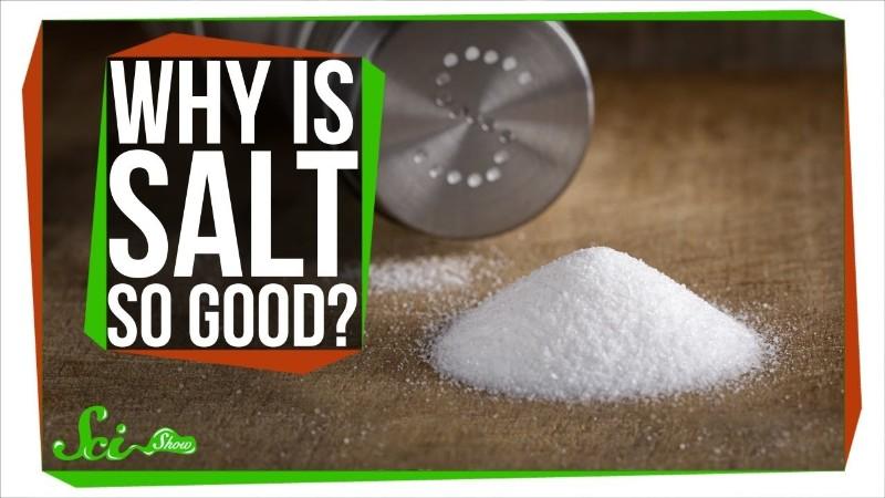 なぜ塩は料理を美味しくするのか