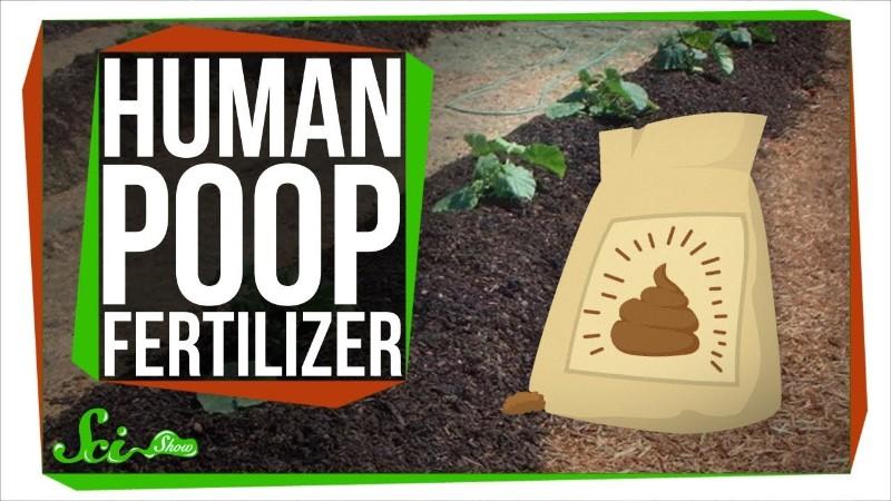 人間の排泄物は肥料として使用できるか?