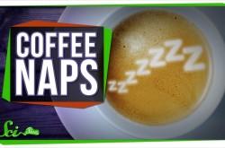 なぜコーヒーと昼寝はあなたを元気にしてくれるのか?