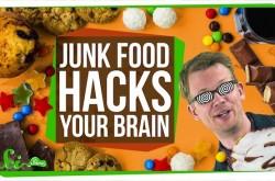 人類が「炭水化物×脂肪分」の誘惑に抗えない理由 ジャンクフードは脳をハックする